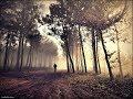 Осень в душе (инструментал Korg PA900) (авторская IgK)