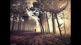�������� ���� Осень в душе (инструментал Korg PA900) (авторская IgK) ������