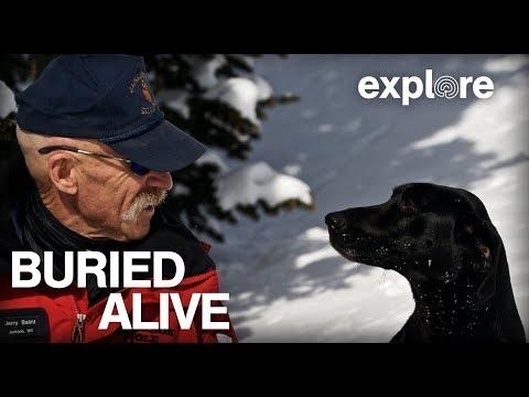 Avalanche Search and Rescue | Explore Films