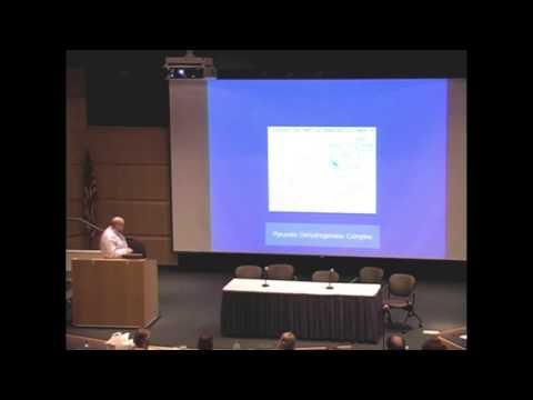 Doctor Burt Berkson - Low Dose Naltrexone (LDN) prescribing Doctor