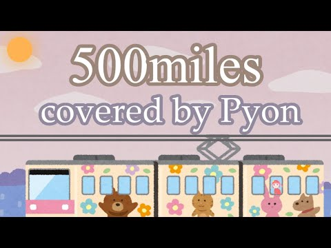 【cover】500miles-Pyon【lyrics】