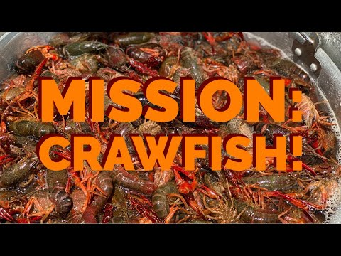 MISSION: CRAWFISH! | How To Make A Crawfish Boil At Home!