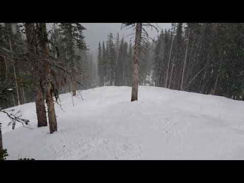 The Glades At The Top Of Nakiska By An Average Skier - Dec 2018