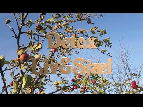 Detox Liv og Sjæl (Dansk Dokumentar om Detox og Helbred)