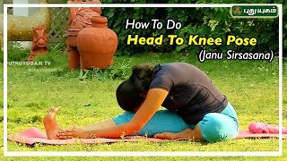 Janu Sirsasana   ஜானு சிரசாசனம்   Yoga for Beginners   Yoga Poses