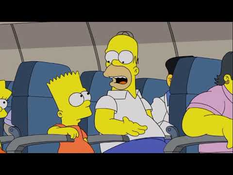 The Simpsons go to Gainesville