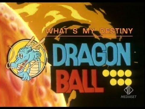 Risultati immagini per what's my destiny dragon ball