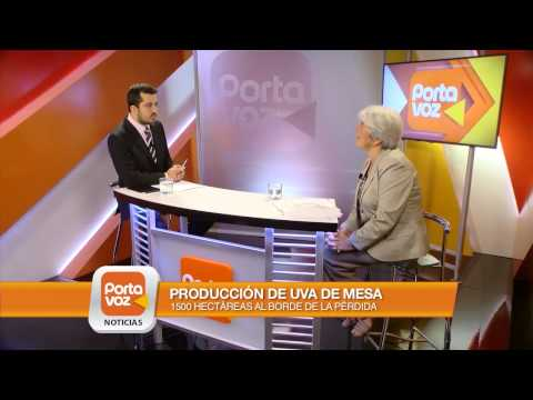 PORTAVOZ NOTICIAS - Entrevista a Felipe Horta, de Rally Mobil y a Lina Arrieta, de Apeco.