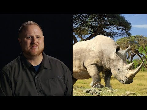Ex-Poachers Talk About How Solving A Crime With A Rhino Made Them Reconsider Their Job