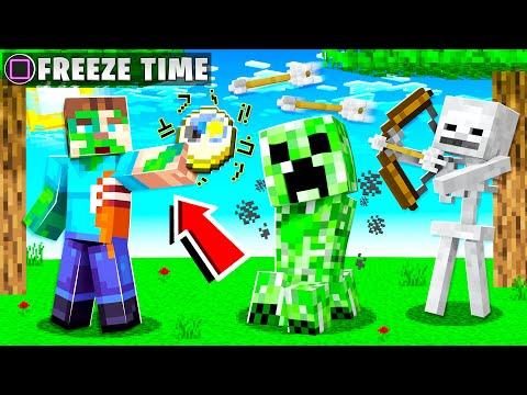 How to STOP TIME in MINECRAFT! (time control)