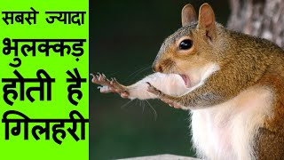 Most Amazing Facts in Hindi | Interesting Unknown Facts about Life, Science of the world list