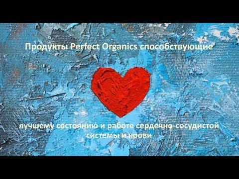 ПРОДУКТЫ PERFECT ORGANICS УЛУЧШАЮЩИЕ ФУНКЦИИ КРОВЕНОСНОЙ СИСТЕМЫ. Д.С.ДЕРГАЧЕВ