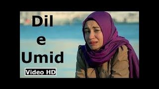 Pakistani Song Dil E Umeed Tora Hai Kisi Ne   Abdul Kabir