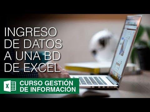 ¿Cómo ingresar datos en una Base de Datos de Excel? | Gestión de la Información #5