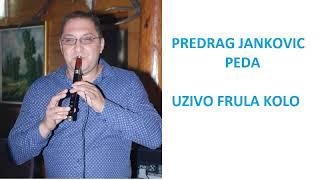 FRULA VLASKA CETVORKA UZIVO - PREDRAG JANKOVIC PEDA (VlaskiMelos)