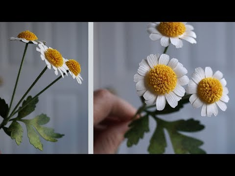 Paper Flower Tutorial: How to Make Feverfew with Your Cutting Machine