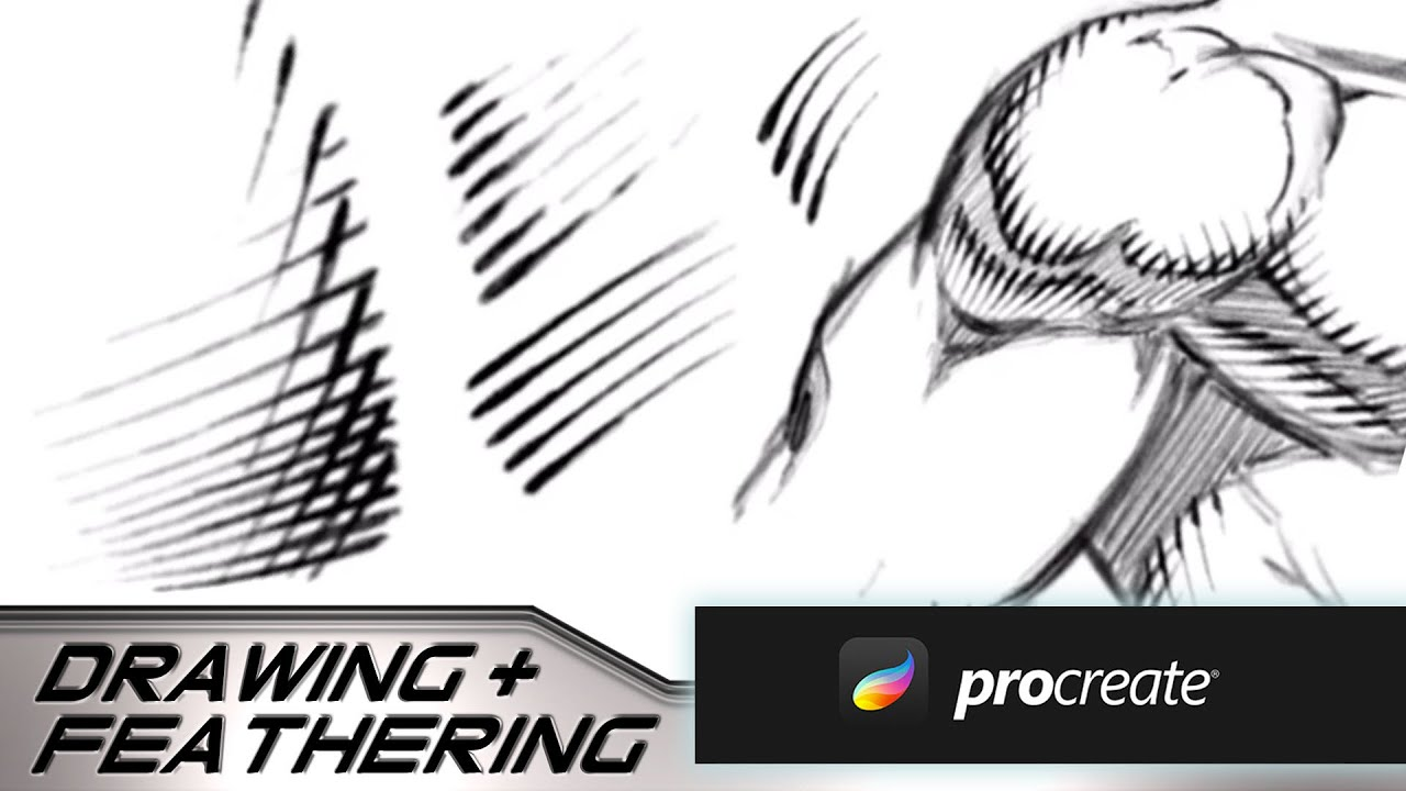 Drawing and Feathering Lines in Procreate on the iPad Pro