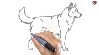 How to Draw a Husky Easy Step By Step Drawing Tutorials for Kids – UCIDraw