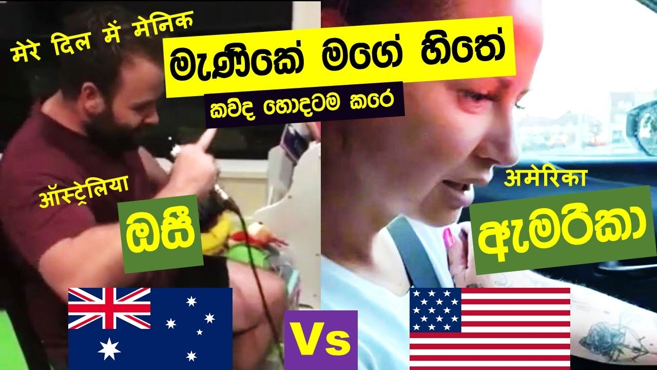Download Manike Mage Hithe මැණිකේ මගේ හිතේ - Official Cover - manike mage hithe Austrailia Vs America -manike