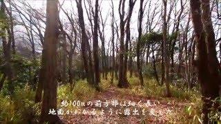 桜井茶臼山 3(前期)(奈良県)Sakuraichausuyama Tumulus 3(Nara Pref.)