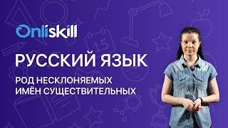 Русский язык 6 класс: Род несклоняемых имён существительных