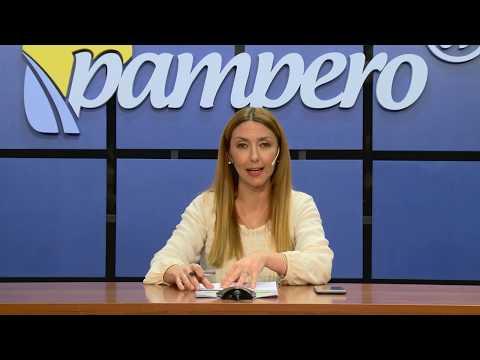 PAMPERO TV 2020