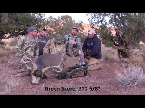 Lucas's OE4A Huge Arizona Strip Buck