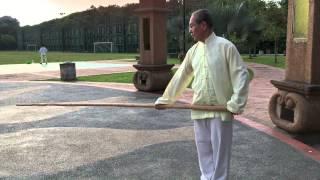 Video Tai chi secret movement - Master Yap Seong Power with Pole Gunshu download MP3, 3GP, MP4, WEBM, AVI, FLV November 2017