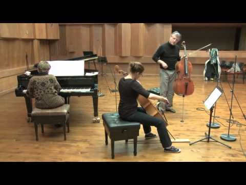 Masterclass with Raphael Wallfisch (Nitzan Gal, cello)
