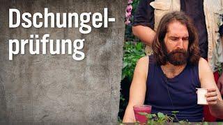 """""""Abgelaufene"""" Lebensmittel – Die Dschungelprüfung"""