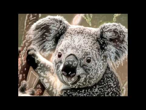 [BEAT] blu - koala from YouTube · Duration:  4 minutes 53 seconds