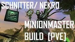 "GW2 | Nekromant, Schnitter | ""Minionmaster"" Build [PvE] [GUIDE]"
