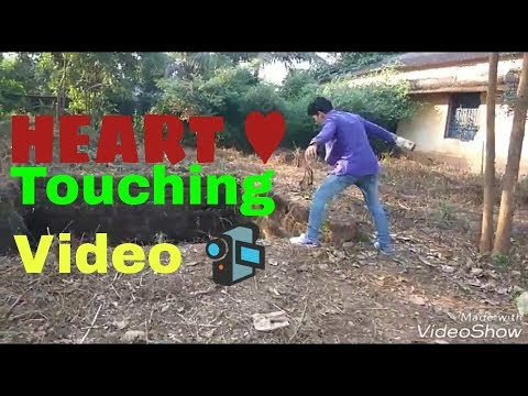 Deigalu mote puni au thare dhoka ||sad song||2017 video||by Rocking Akshay!