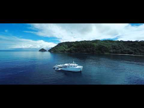 Sea Hunter by Drone at Cocos Island HD