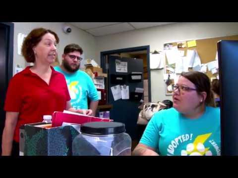 Animal Services | LouisvilleKy gov