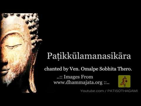 32 Parts of the body meditation in 16 Languages [GRAPHIC CONTENT] Dvattimsakara | patikulamanasikara