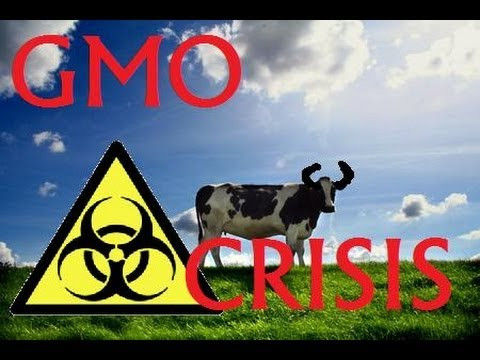 Genetic Modified Food Exposed!  MONSANTO CRISIS!
