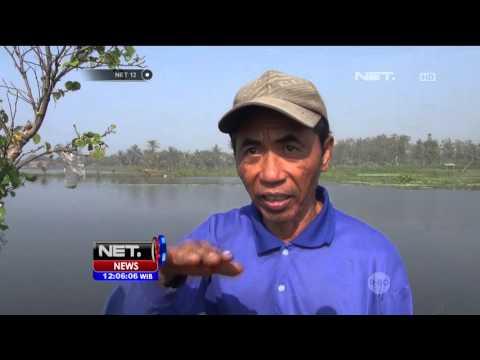 Pasca Pembunuhan Salim Kancil, Pemerintah Tutup Lokasi Penambangan di Malang