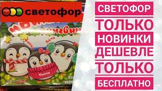СВЕТОФОР // только новинки // Февраль // товары для сада и огорода // Много посуды