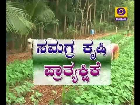 BC-22/11/17.1)Plant protection of Red Gram crops.2)Integrated farming Demonstration.