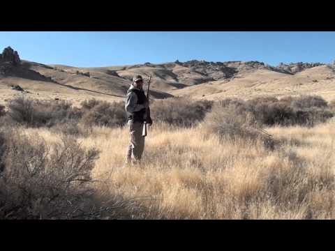 Quail Hunting Somewhere In Nevada