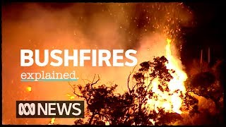The science of bushfires explained | ABC News