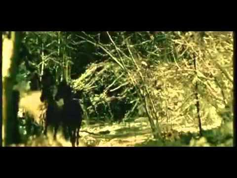 Music video Лина Милович - А дура, улыбаясь, тает