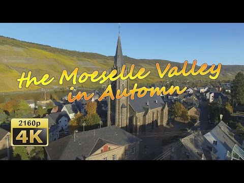 Wehlen at the Moselle in Autumn (Bird's Eye View)  - Germany 4K Travel Channel