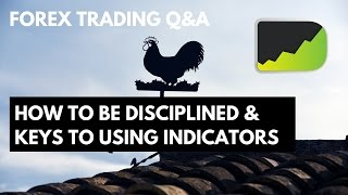 Forex Trading Q&A: How To Be Disciplined & Keys To Using Indicators
