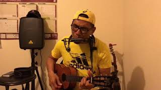Rayuan pulau kelapa   Ukulele & harmonica cover