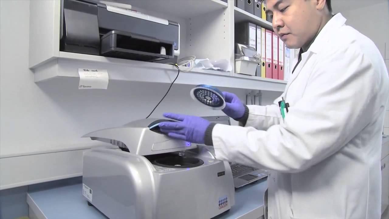 Companion Diagnostics in Cancer - Peer Schatz, CEO, QIAGEN ...
