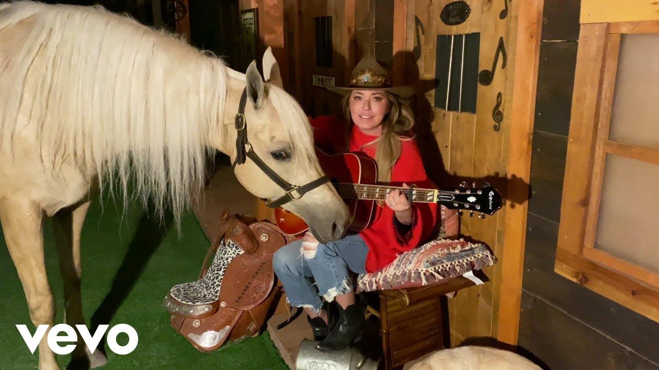 Download Shania Twain - Honey I'm Home/Man! I Feel Like A Woman! (ACM Presents)