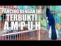 Pancingan Kacer Jitu Jadikan Kacer Lain Emosi Gacor Dan Buka Ekor  Mp3 - Mp4 Download