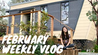College Week In My Life | Tiny House Airbnb, Valentine's Day, Lunar New Year